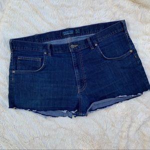 Patagonia Blue Cut-Off Shorts